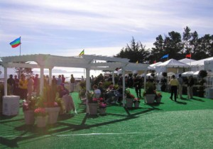Pebble Beach Hospitality Village Patio, 3rd Fairway